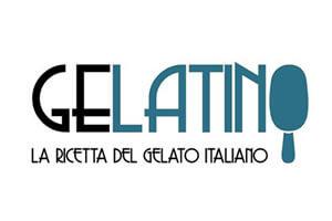Web Agency Carpi Modena per Gelatino